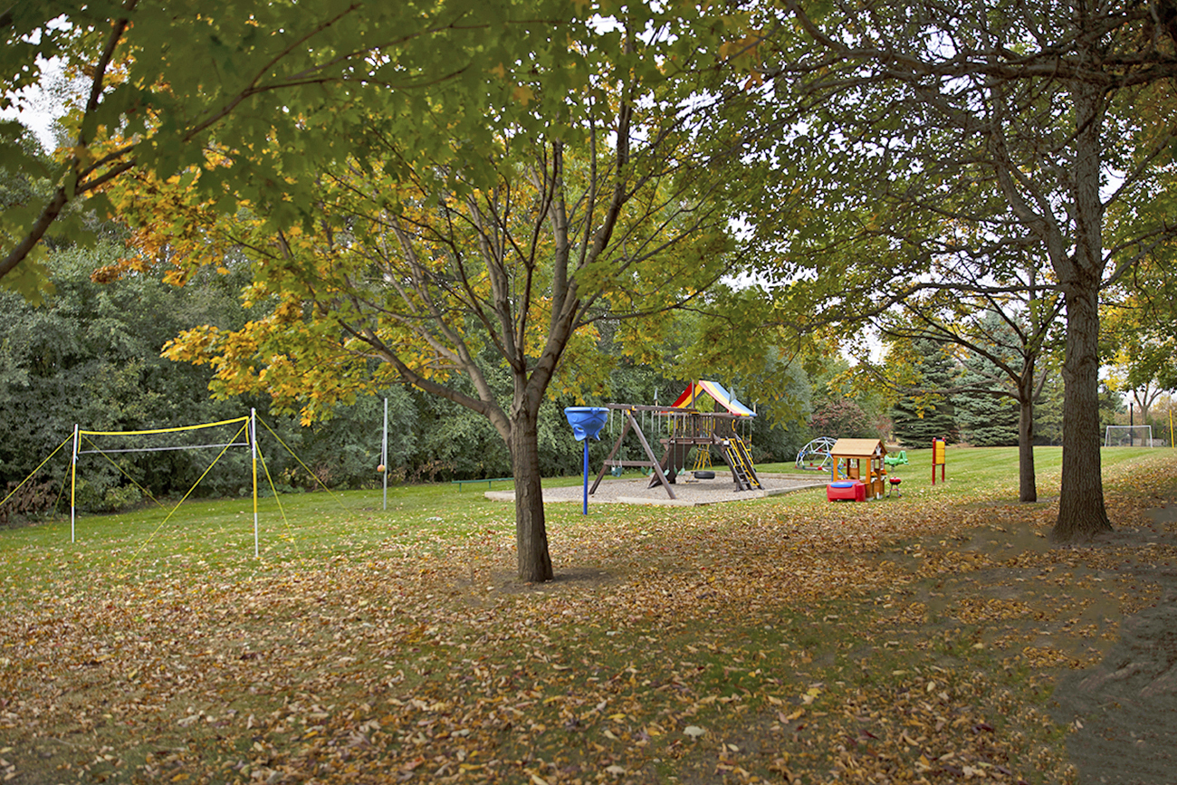 Park area features soccer net